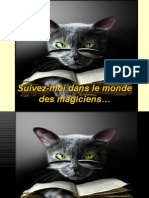 Suivez-Moi Dans Le Monde Des Magiciens…