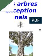 Les Arbres Exception Nels