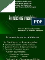 Acumulaciones Intracelulares (1)
