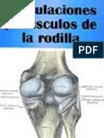Articulaciones y Musculos de La Rodilla