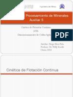Auxiliar 5 Cin Tica Continua y DTR (1)