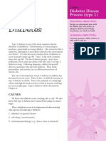 Pink Panther - Diabetes Management - Chapter 3