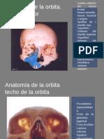 radiologia en oftalmologia