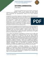 AUDITORIA AMBIENTAL TRABAJO.docx