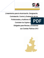 Lineamientos Para Auditores Externos 2012