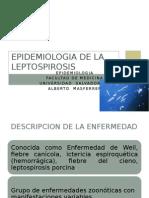 Leptospirosis - Epidemiologia