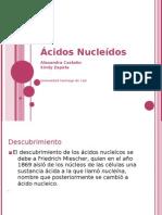 Ácidos Nucleicos!