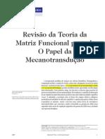 Revision Teoria Matriz Funcional I
