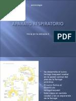 12o Embriologia del  Aparato respiratorio