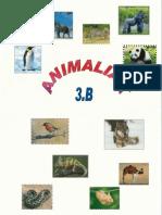 ANIMALIAK 3.B