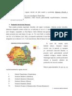 regiuni viticole.doc