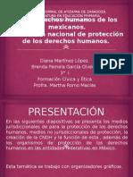 Los Derechos Humanos de Los Mexicanos V.