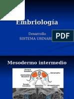 Embriologia de Sistema Urinario