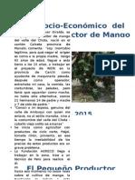 Perfil Socio-económico  del Pequeño Productor de Mango Valle.docx