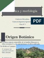 Clase Botanica y morfología.pdf