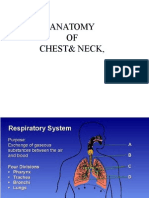 Anatomy of Chest & Neck Final