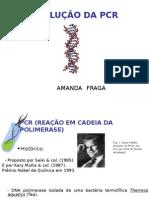 amanda fraga 30-03-2011,.ppt