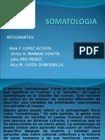 SOMATOLOGIA EXPOSICION