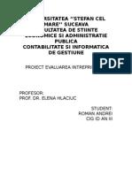 evaluarea intreprinderii cigIII