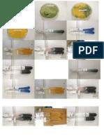 PRINNNTTT hasil pengamatan bakteri.docx