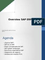 curso SAP Overview