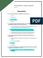 6. Fotosintesis