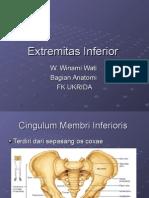 Extremitas Inferior