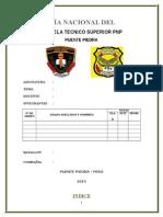 Marco Legal de La Pnp