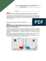 Interpretación Pirámide de población.pdf