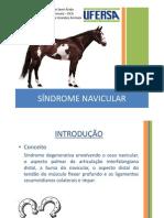 Sindrome Navicular