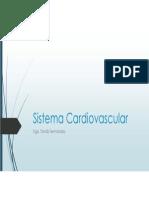 4- Sistema Cardiovascular