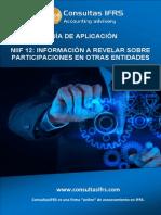 Guia Practica Niff 12 - Informacion a Revelar Sobre Participaciones en Otras Entidades
