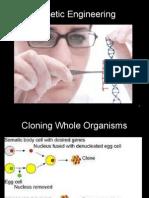 8. Measures of Man Genetic Engineering (1)