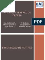 Patologia de Cadera