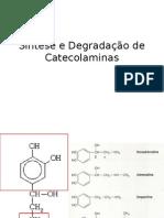 Síntese e Degradação de Catecolaminas