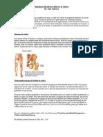 Sintomas del Nervio Ciático y la Ciática - Doctor Quiropractico en Atlanta Ga  | Gainesville Ga