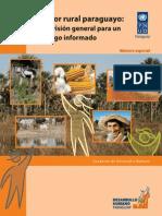 Sector Rural Paraguayo 2010 - PNUD - PORTALGUARANI