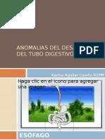 Alteraciones en El Desarrollo Del Tubo Digestivo