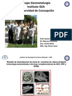 Estudio Cobres Negros_udc