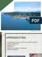 Appendicities