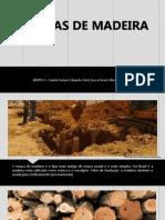 Estacas de Madeira 1