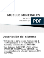 Muelle Minerales