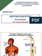 178. Sistema Digestivo (1)