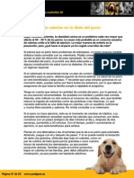 Reducción de Calorías en La Dieta Del Perro