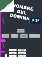 TIC Exposición (dominios)