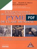 Un nuevo sistema de gestion para lograr pymes de clase mundial