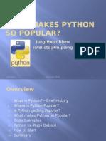 What Makes Python So Popular?