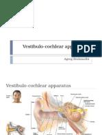 Vestibulo Cochlear App