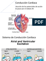 conduccion cardiaca