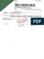 Pensión de Alimentos - Raul Dominguez - Sentencia y Liquidación